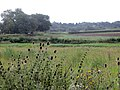 Evening near Yarwell Junction - August 2012 - panoramio.jpg