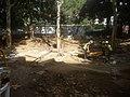 Excavació jardins Montserrat 20180718 104005 (04).jpg