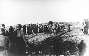 FK Radnički 1923 -  Nazi Germans rounding up Serbian civilians in Kragujevac for execution.