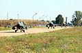 F-16 Fighting Falcons, Viper Lance 2006.jpg