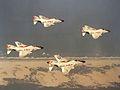 F-4B Phantoms of VF-102 in flight in 1962.jpg