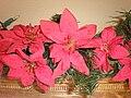 Fake Christmas Poinsettias in pine needle streamer.JPG