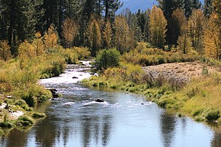 Middle Fork Feather River river in the United States of America