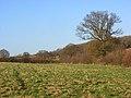 Farmland, Chartridge - geograph.org.uk - 1081172.jpg