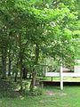 Farnsworth House (5923855084).jpg