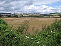Field at Nailsbourne - geograph.org.uk - 1463420.jpg