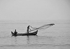 Fishing with cast-net from a boat near Kozhikode Beach