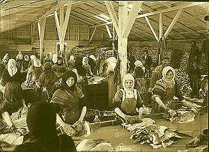 Fish factory - Image: Fiskvinnslukonur 1910 1920 kirkjusandur