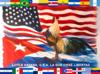 Flag of Little Havana