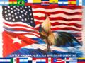 Flag of Little Havana, Florida.png