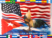 Flag of Little Havana, Florida.png