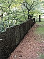 Flagstone Wall - geograph.org.uk - 425600.jpg