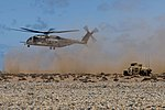 Flickr - Official U.S. Navy Imagery - African Lion 2012.jpg