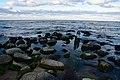 Flotskaya ul., Kaliningradskaya oblast' Russia, 238575 - panoramio.jpg