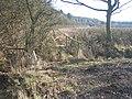 Footbridge by Weethley Wood - geograph.org.uk - 134405.jpg