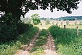 Footpath from East Bergholt to Stratford St Mary - geograph.org.uk - 1206881.jpg