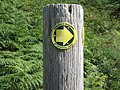 Footpath marker post - geograph.org.uk - 921513.jpg