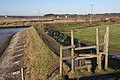 Footpath to Busscreek Marshes - geograph.org.uk - 1073491.jpg