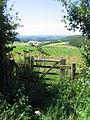 Footpath to Iwerne Minster - geograph.org.uk - 516549.jpg
