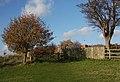 Footpath to Levington Church - geograph.org.uk - 1592207.jpg