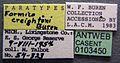 Formica creightoni casent0103450 label 1.jpg