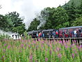 Fort William station steam 2015 7.JPG