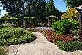 Fort Worth Botanic Garden October 2019 18 (Republic of Texas Rose Garden).jpg