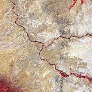 Four Corners - False-color satellite image of the Four Corners. Bright red lines are vegetation along the major rivers of the area.