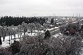 Freezing rain in Thornhill (11497960953).jpg