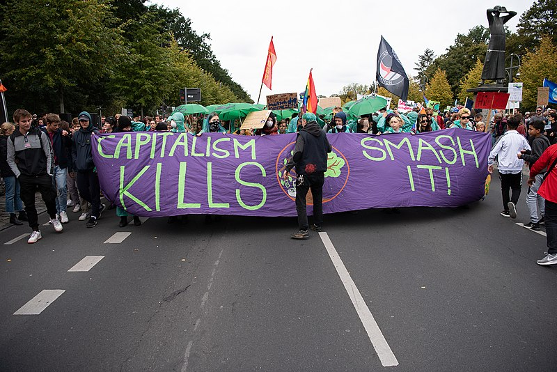 File:FridaysForFuture Demonstration in Berlin, 20.09.2019 (48895537293).jpg
