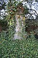 Friedhof Unterliederbach, Grab Kern 1922.JPG