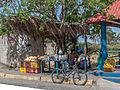Fruit seller in Punta Cují.jpg