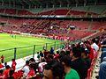 Futbol Rojinegro.JPG