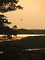 Ganges River Sunset, Mayapur, WB.jpg