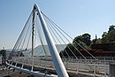 Gare des Guillemins Sept 2008 Access Bridge 02.jpg