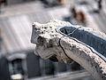 Gargouille de la Tour Saint-Jacques, Paris août 2014.jpg