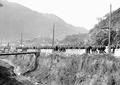 Gebirgsinfanteristen vor den Burgen bei Bellinzona - CH-BAR - 3239560.tif