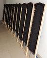 Gegaloneerde tanukis op strekrek.jpg
