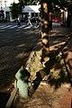 Georgetown hydrant - panoramio.jpg