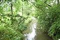 Geul nabij Volmolen Epen P1080498.jpg