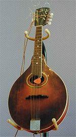 Mandolino Gibson A4