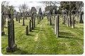 Glasnevin Cemetery - (7051853769).jpg