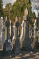 Glasnevin Cemetery Contains Many Celtic Crosses (4164123930).jpg
