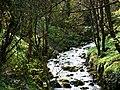 Glen Maye - geograph.org.uk - 773042.jpg