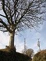 Gogwell mast - geograph.org.uk - 1767715.jpg