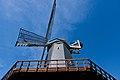 Golden Gate Park - Murphy Windmill - March 2018 (1634).jpg