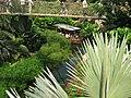 Gondwanaland-Boot unter Hängebrücke August 2011 - panoramio.jpg