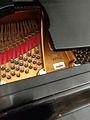 Grand Floridian Steinway Piano (31630900246).jpg