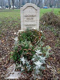 Grave of Miklós Vásárhelyi (Óbuda Cemetery).jpg