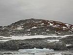 Green-island-parnikoza-2014.jpg